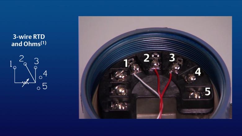 Diagram How To Set Up A Dual Sensor For The Rosemount 3144p