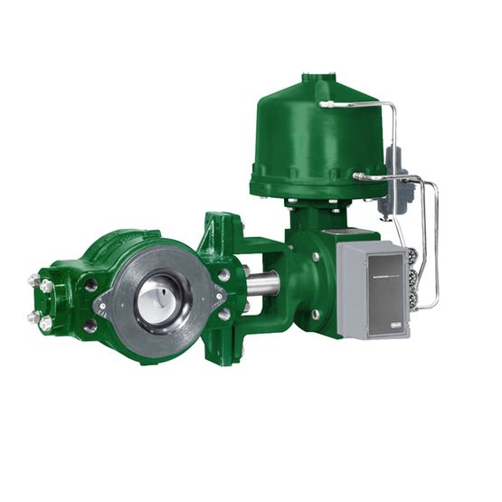 VAN BI FISHER- MỸ -Fisher™ V250 Control Valve